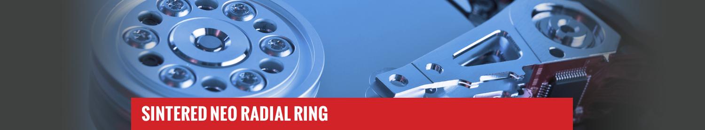 Sintered Neo Radial Ring