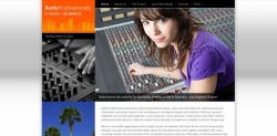 Audio Professionals of America - Los Angeles Website Design