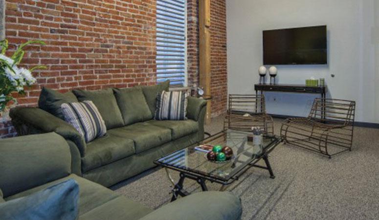 Turtle Focus Room - Living Room Setup
